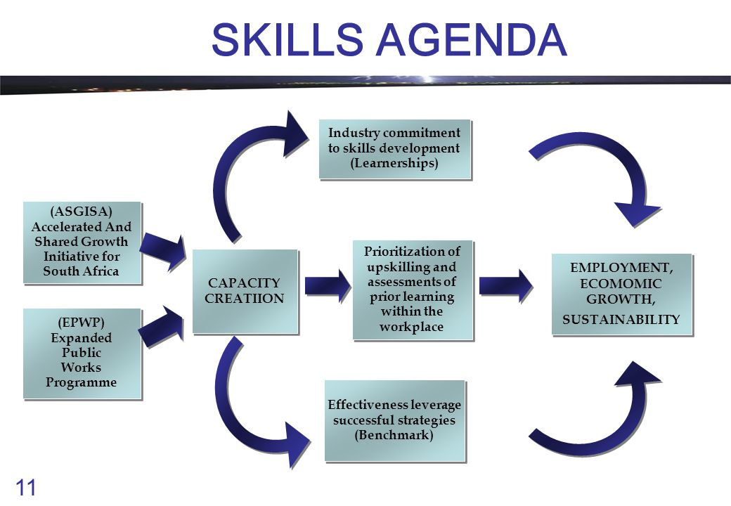 11 SKILLS AGENDA (ASGISA) Accelerated And Shared Growth Initiative for South Africa (ASGISA) Accelerated And Shared Growth Initiative for South Africa