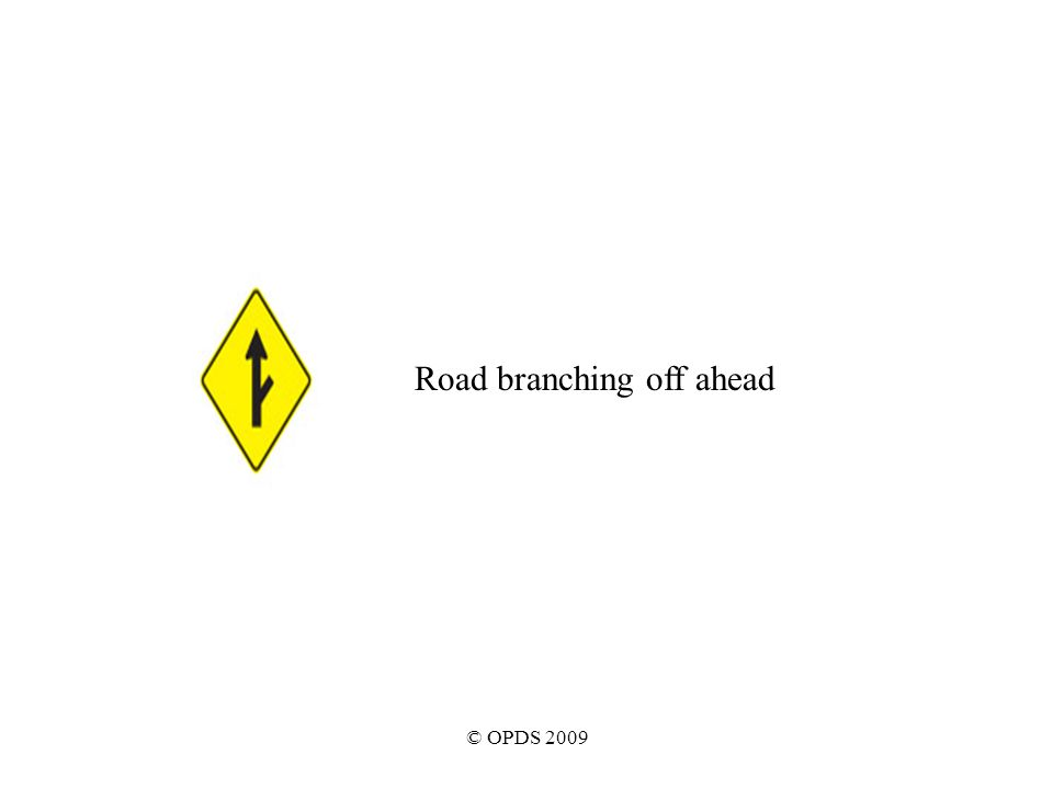 © OPDS 2009 Road branching off ahead