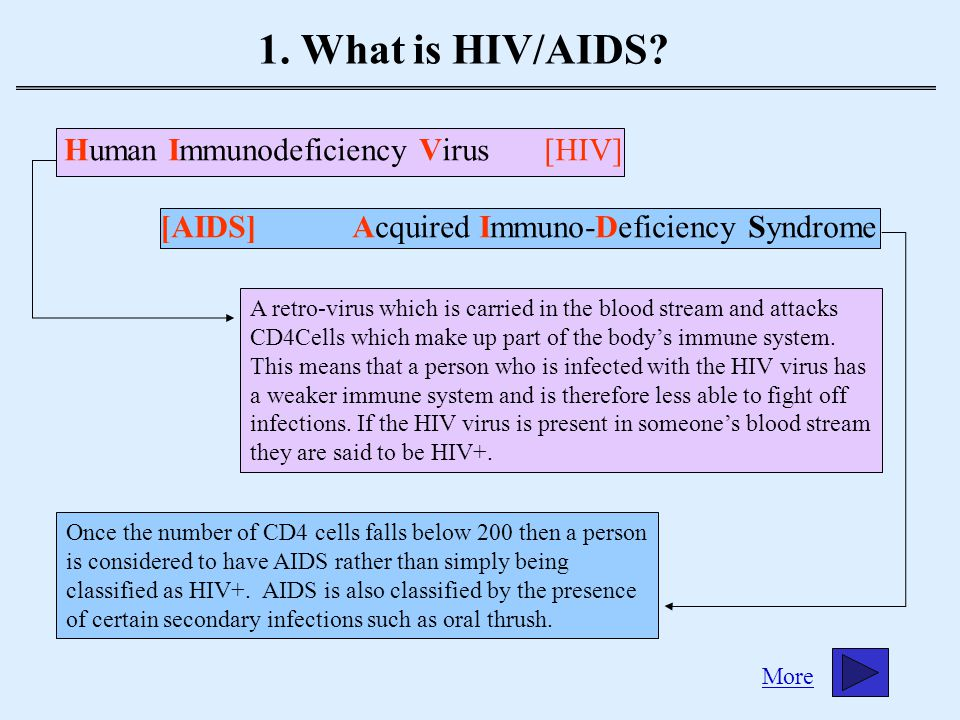 1.What is HIV/AIDS. (Cont.) The HIV/AIDS virus doesn't cause death itself.