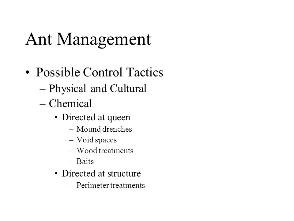 Ant Management Possible Control Tactics –Physical and Cultural –Chemical Directed at queen –Mound drenches –Void spaces –Wood treatments –Baits Direct