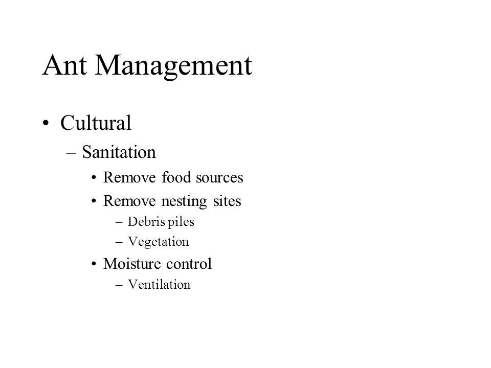 Ant Management Cultural –Sanitation Remove food sources Remove nesting sites –Debris piles –Vegetation Moisture control –Ventilation