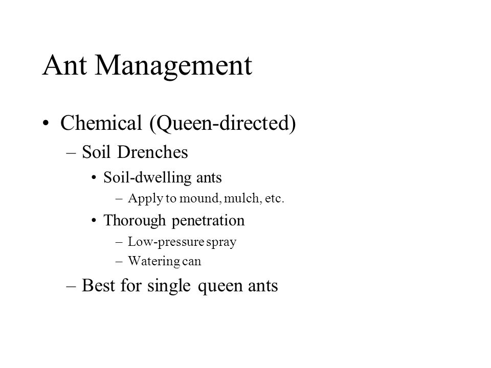 Ant Management Chemical (Queen-directed) –Soil Drenches Soil-dwelling ants –Apply to mound, mulch, etc. Thorough penetration –Low-pressure spray –Wate