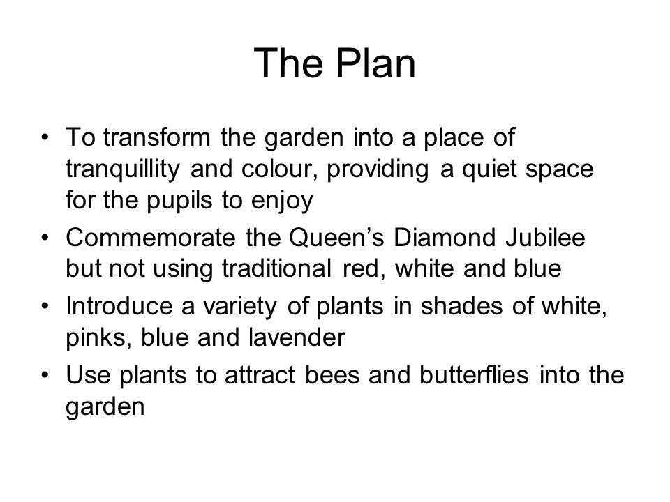 The Plan To transform the garden into a place of tranquillity and colour, providing a quiet space for the pupils to enjoy Commemorate the Queen's Diamond Jubilee but not using traditional red, white and blue Introduce a variety of plants in shades of white, pinks, blue and lavender Use plants to attract bees and butterflies into the garden