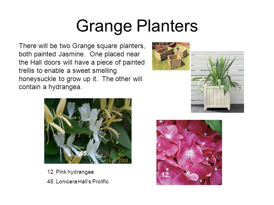 Grange Planters There will be two Grange square planters, both painted Jasmine.