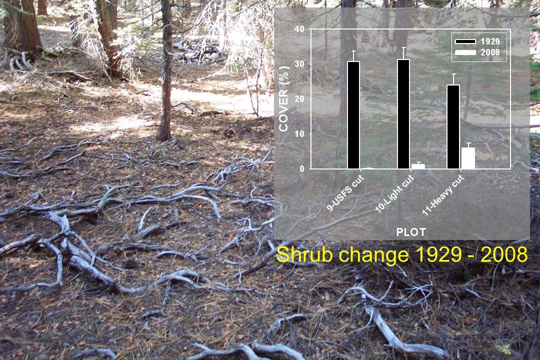 Shrub change 1929 - 2008