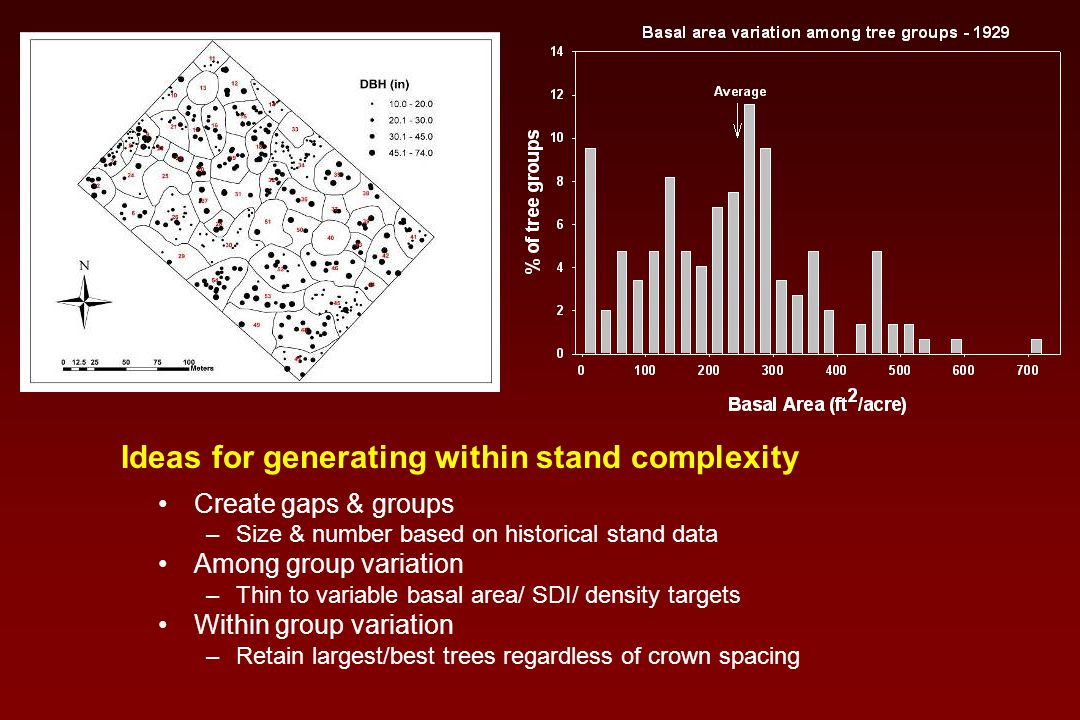 Create gaps & groups –Size & number based on historical stand data Among group variation –Thin to variable basal area/ SDI/ density targets Within group variation –Retain largest/best trees regardless of crown spacing Ideas for generating within stand complexity