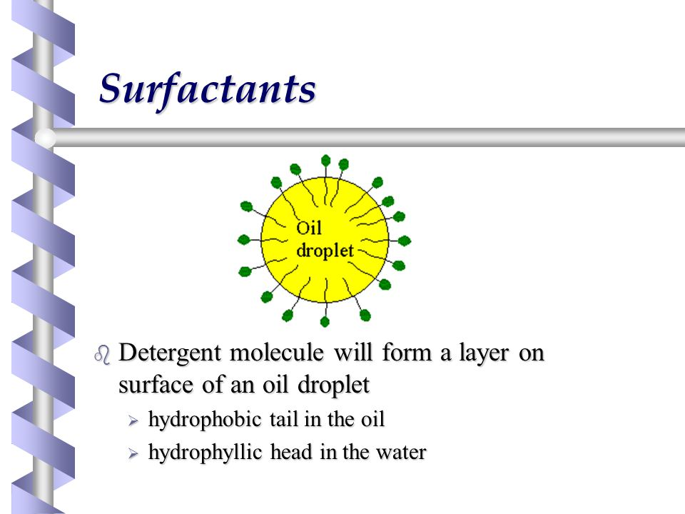Surfactants b Detergent molecule will form a layer on surface of an oil droplet  hydrophobic tail in the oil  hydrophyllic head in the water