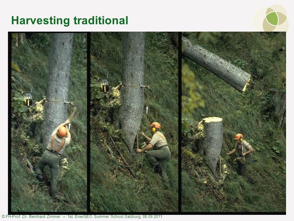© FH-Prof. Dr. Bernhard Zimmer – 1st. EnerGEO Summer School,Salzburg, 08.09.2011 Harvesting traditional