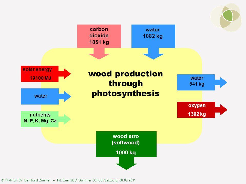 © FH-Prof. Dr. Bernhard Zimmer – 1st. EnerGEO Summer School,Salzburg, 08.09.2011 wood production through photosynthesis solar energy 19100 MJ water nu