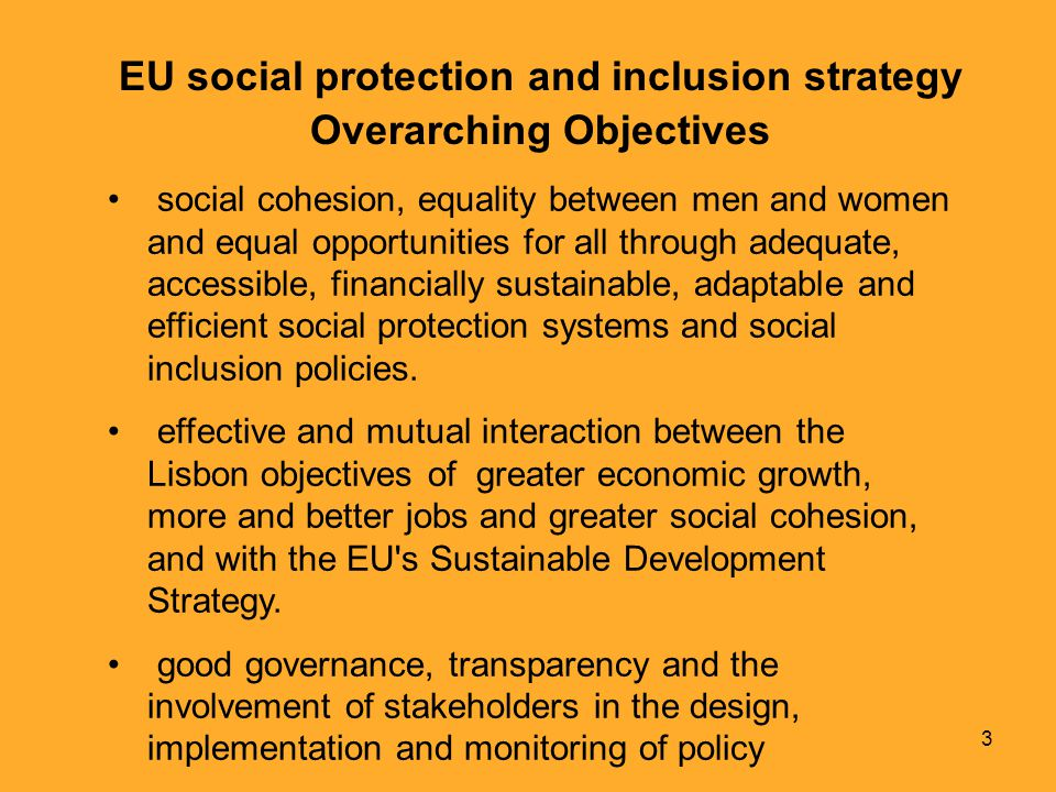 3 EU social protection and inclusion strategy Overarching Objectives social cohesion, equality between men and women and equal opportunities for all through adequate, accessible, financially sustainable, adaptable and efficient social protection systems and social inclusion policies.