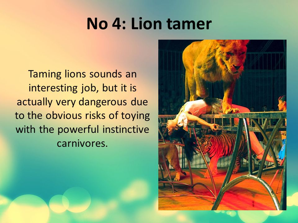 No 4: Lion tamer Taming lions sounds an interesting job, but it is actually very dangerous due to the obvious risks of toying with the powerful instinctive carnivores.