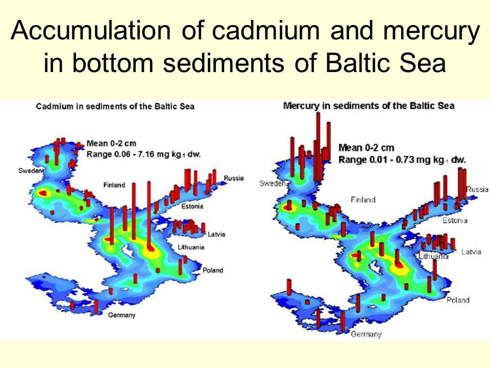 Accumulation of cadmium and mercury in bottom sediments of Baltic Sea