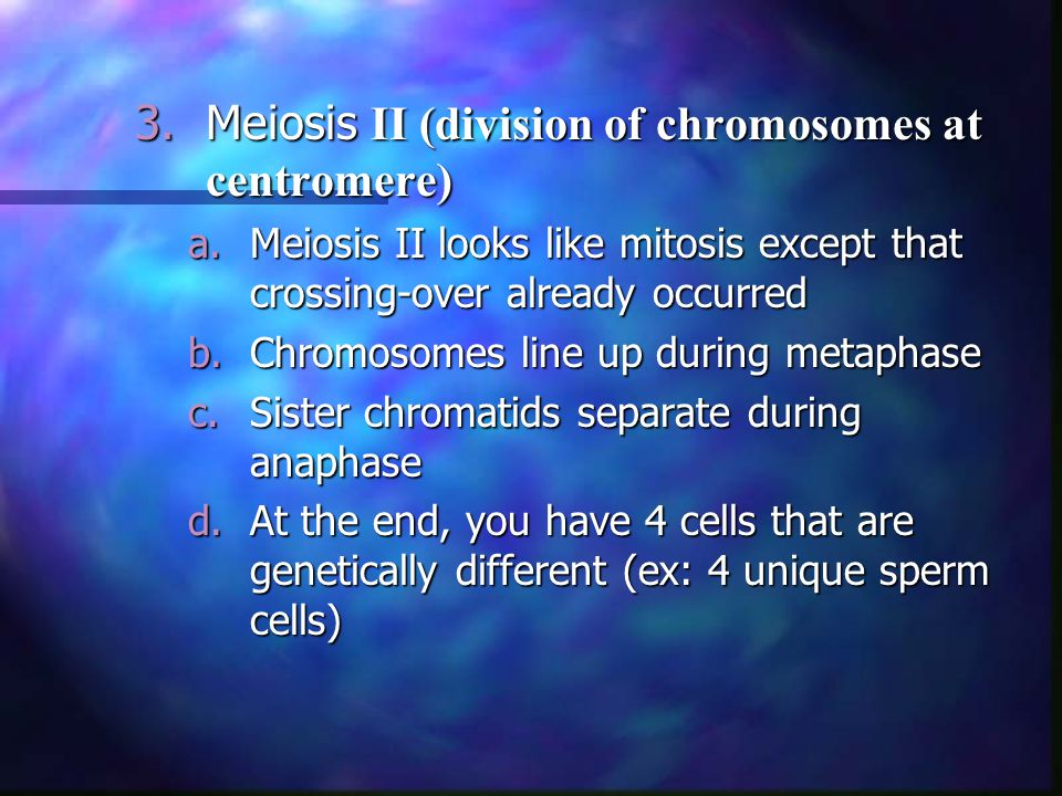 3.Meiosis II (division of chromosomes at centromere) a.Meiosis II looks like mitosis except that crossing-over already occurred b.Chromosomes line up during metaphase c.Sister chromatids separate during anaphase d.At the end, you have 4 cells that are genetically different (ex: 4 unique sperm cells)
