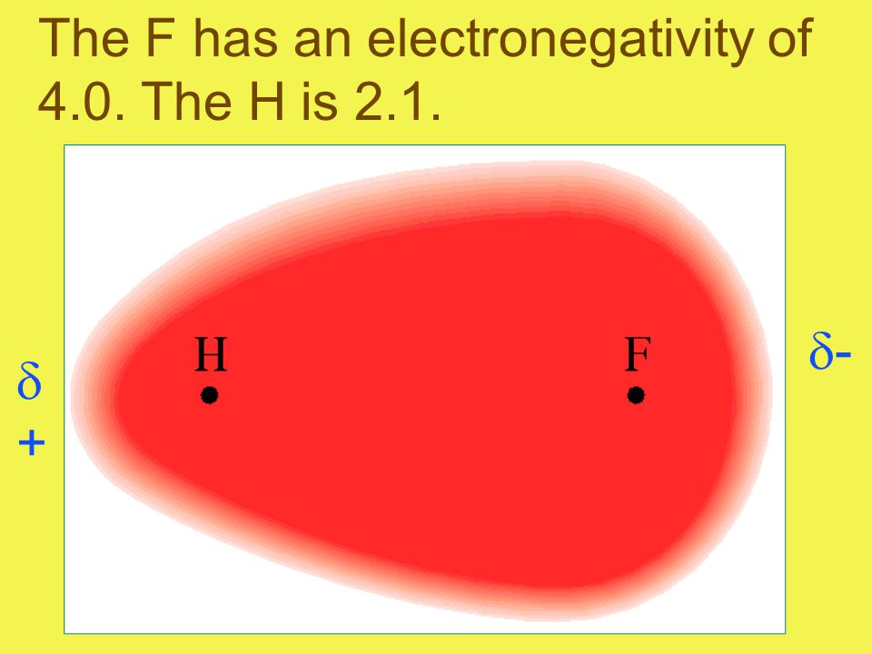 The F has an electronegativity of 4.0. The H is 2.1. ++ --