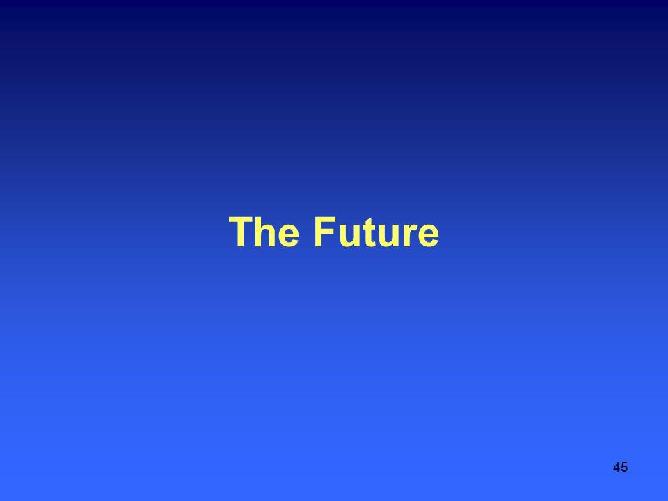 45 The Future