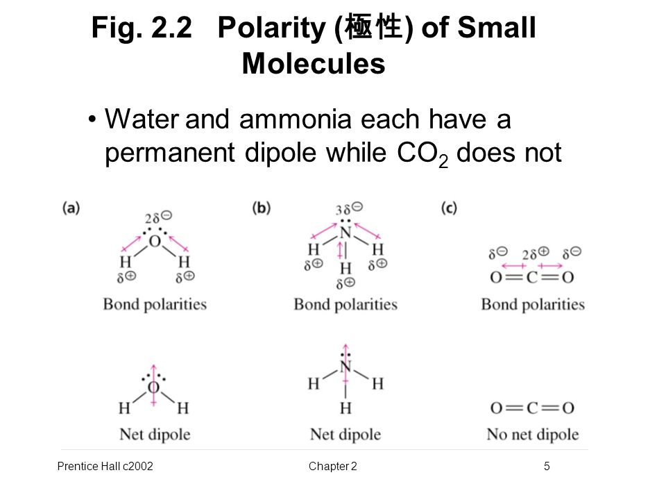 Prentice Hall c2002Chapter 25 Fig. 2.2 Polarity ( 極性 ) of Small Molecules Water and ammonia each have a permanent dipole while CO 2 does not