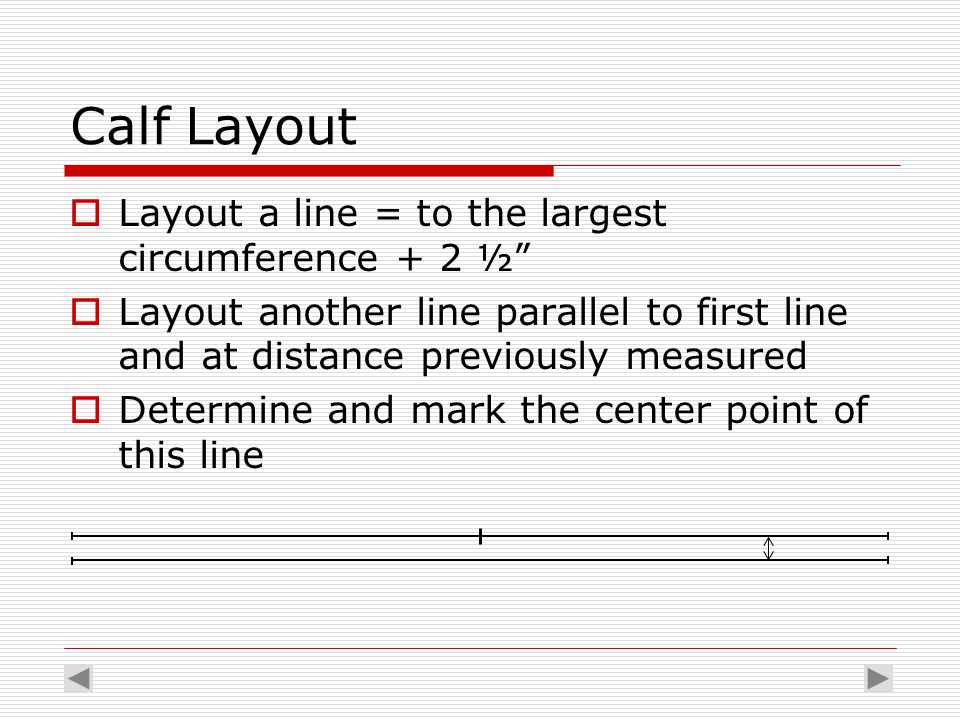 "Calf Layout  Layout a line = to the largest circumference + 2 ½""  Layout another line parallel to first line and at distance previously measured  D"