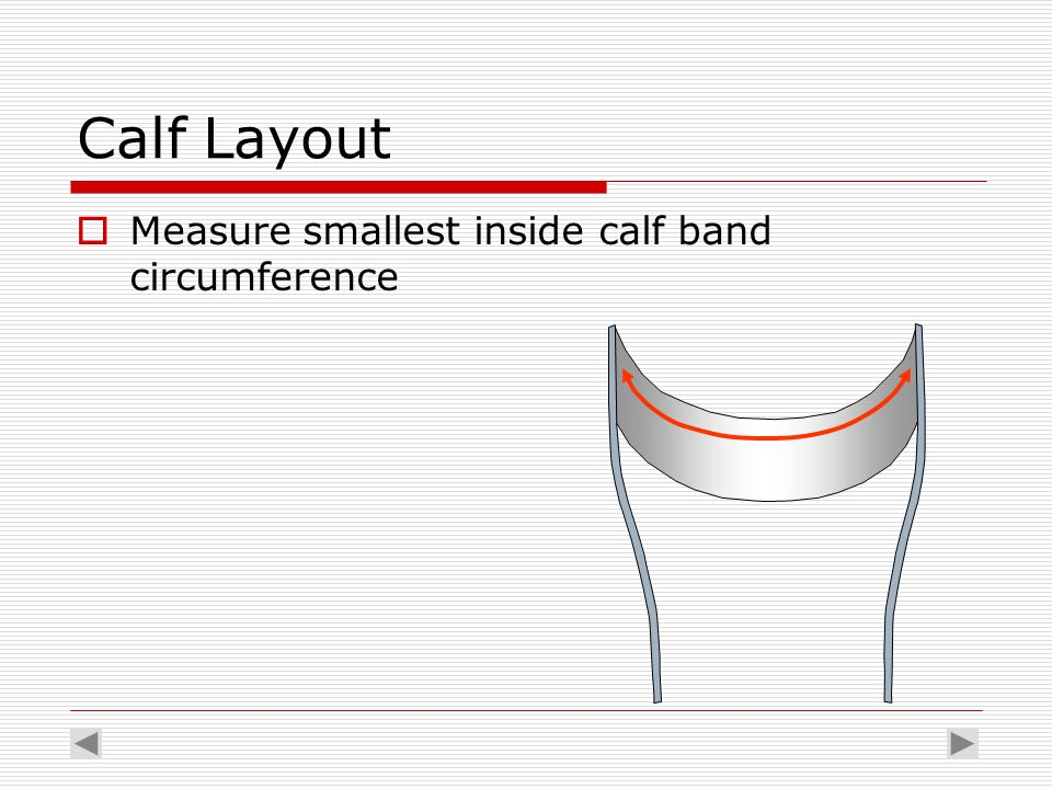 Calf Layout  Measure smallest inside calf band circumference