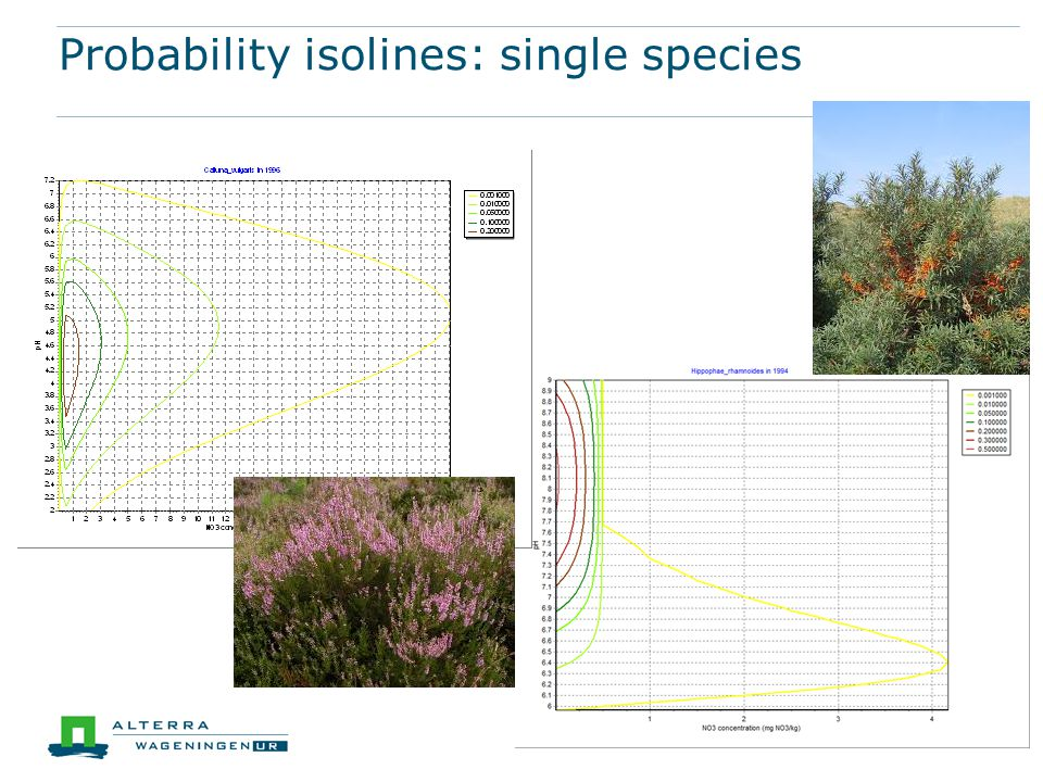 Probability isolines: single species
