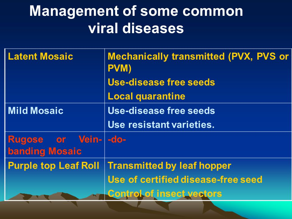 Latent MosaicMechanically transmitted (PVX, PVS or PVM) Use-disease free seeds Local quarantine Mild MosaicUse-disease free seeds Use resistant variet