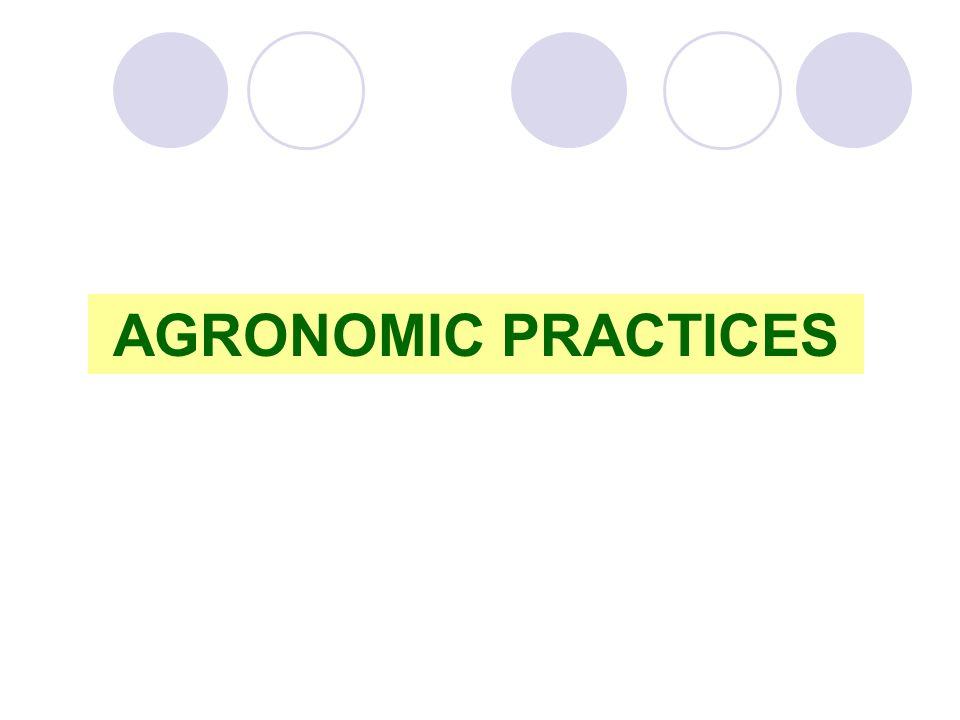 AGRONOMIC PRACTICES