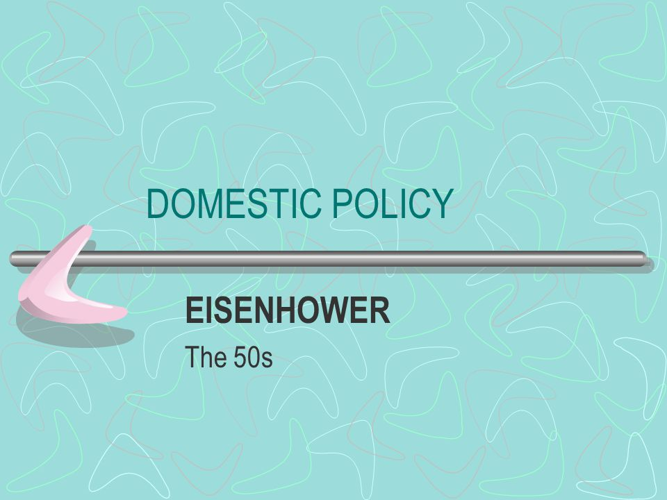 DOMESTIC POLICY EISENHOWER The 50s