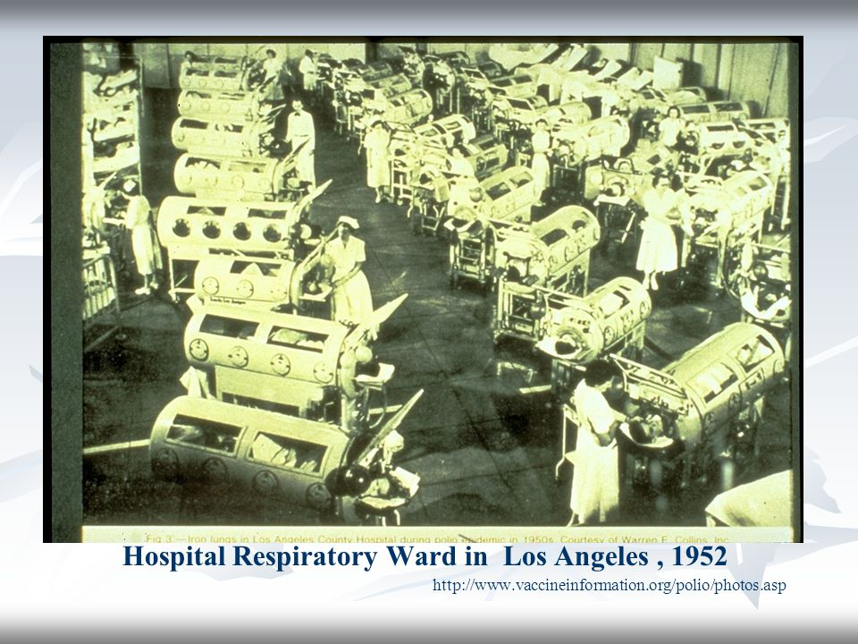 Hospital Respiratory Ward in Los Angeles, 1952 http://www.vaccineinformation.org/polio/photos.asp