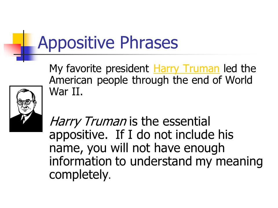 Appositive Phrases What is the essential appositive in this sentence.