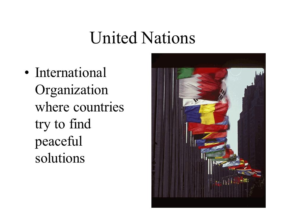 What is the United Nations?