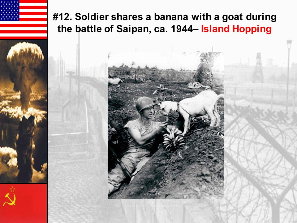 #12. Soldier shares a banana with a goat during the battle of Saipan, ca. 1944– Island Hopping