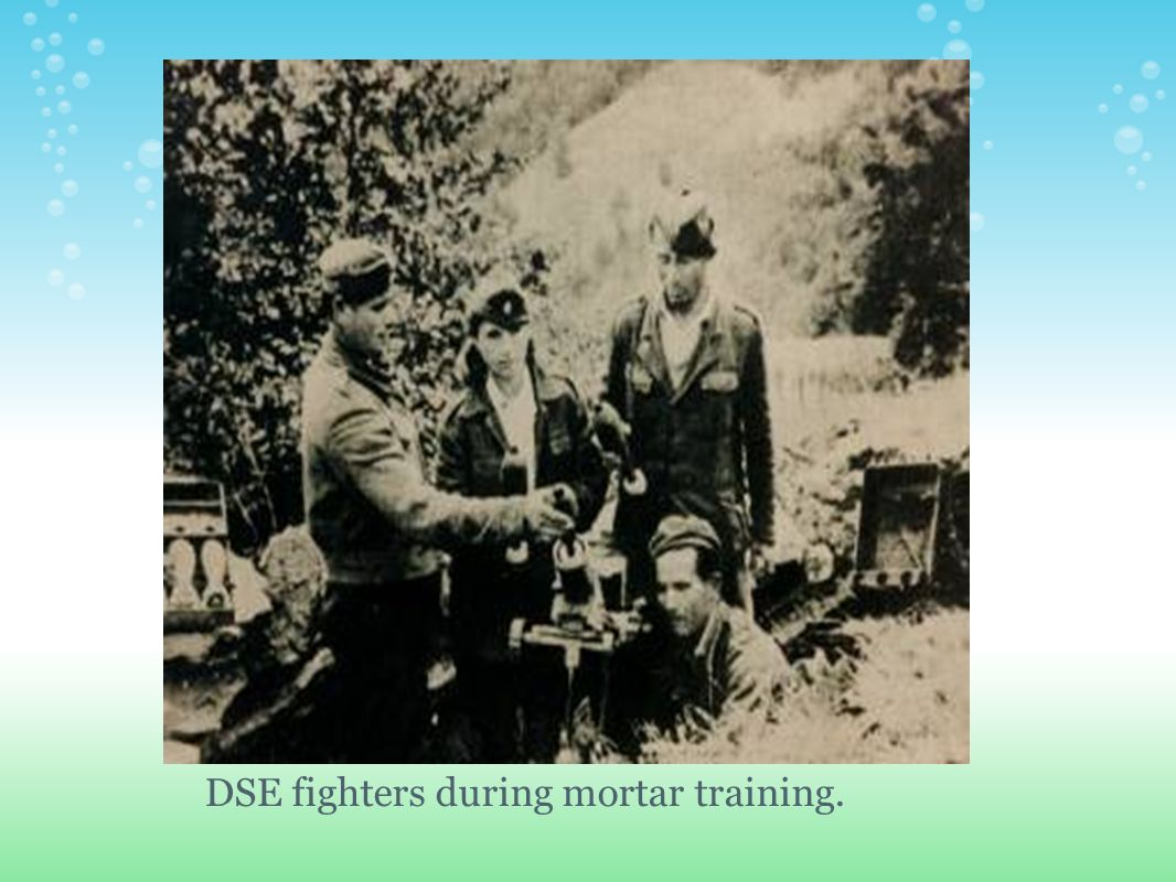 DSE fighters during mortar training.