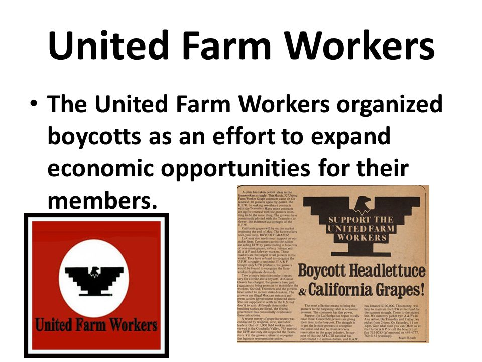 United Farm Workers The United Farm Workers organized boycotts as an effort to expand economic opportunities for their members.