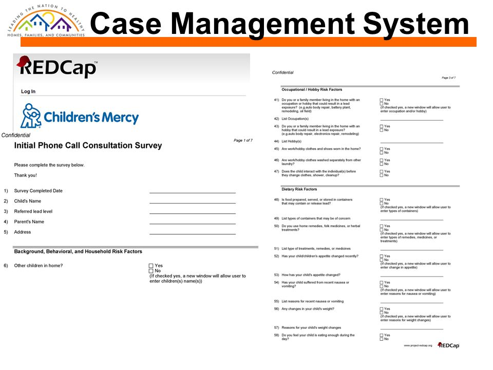 Case Management System
