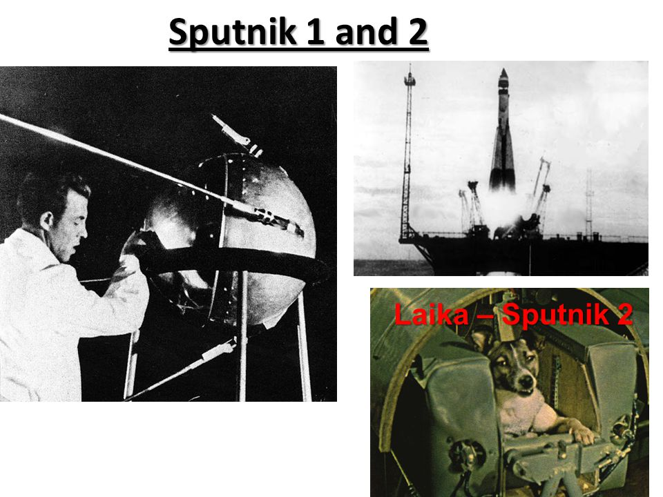 Sputnik 1 and 2 Laika – Sputnik 2