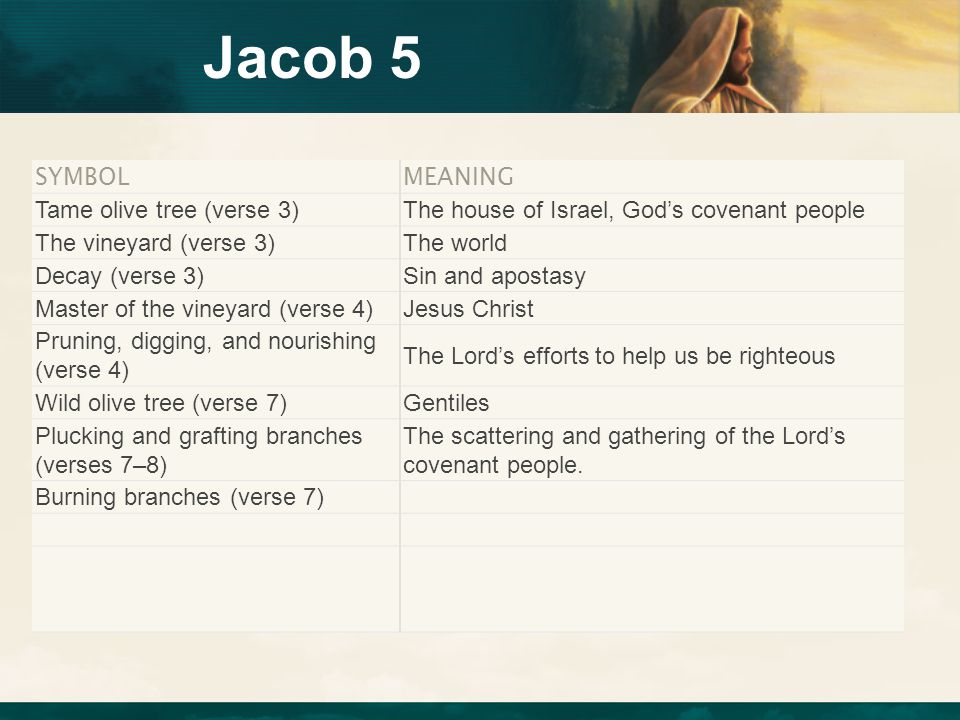 Jacob 5 SYMBOLMEANING Tame olive tree (verse 3)The house of Israel, God's covenant people The vineyard (verse 3)The world Decay (verse 3)Sin and apost
