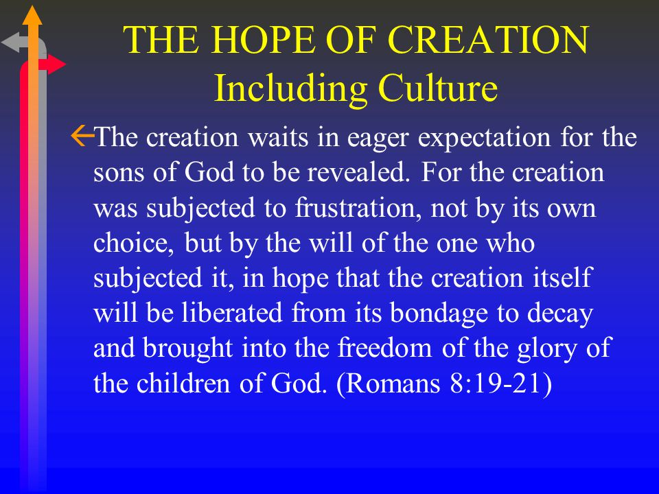 THE HOPE OF CREATION Including Culture ßThe creation waits in eager expectation for the sons of God to be revealed.