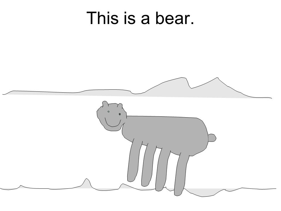 This is a bear.