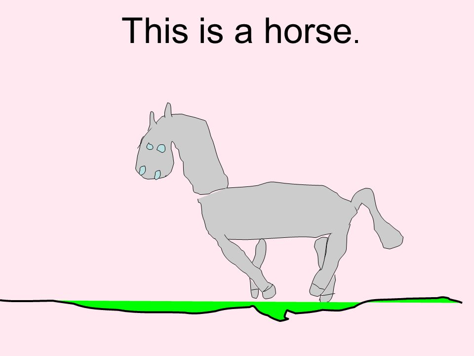 This is a horse.
