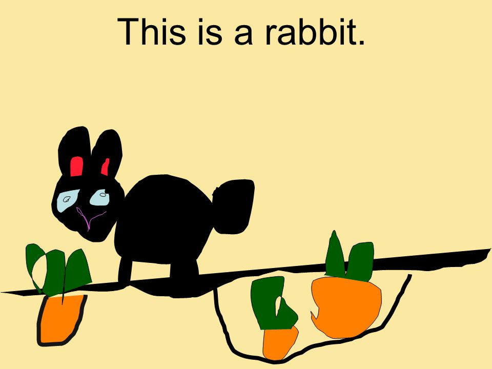 This is a rabbit.