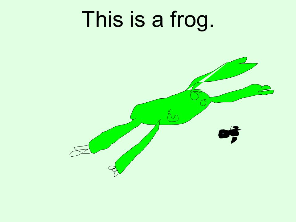 This is a frog.