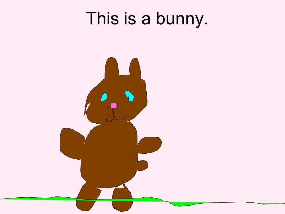 This is a bunny.
