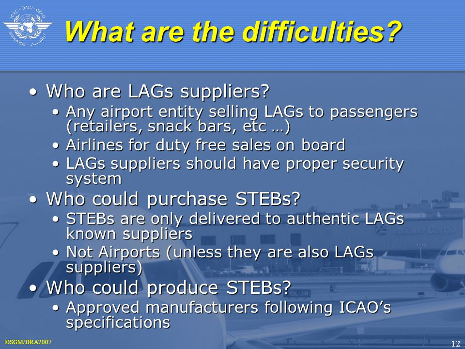 ©SGM/DRA2007 12 Who are LAGs suppliers Who are LAGs suppliers.