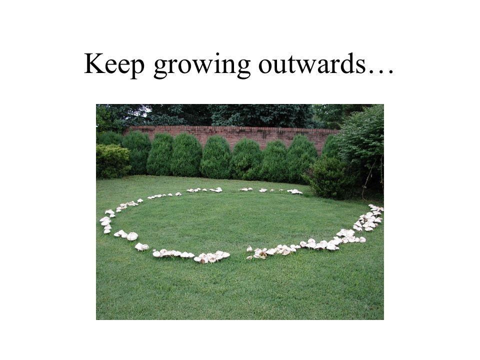Keep growing outwards…