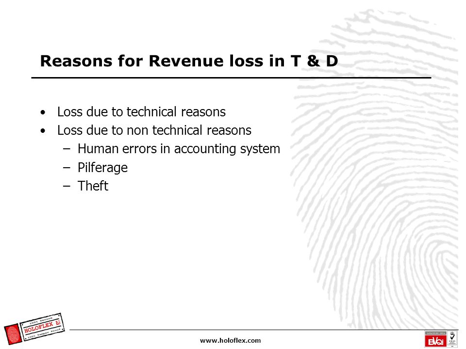 www.holoflex.com Reasons for Revenue loss in T & D Loss due to technical reasons Loss due to non technical reasons –Human errors in accounting system