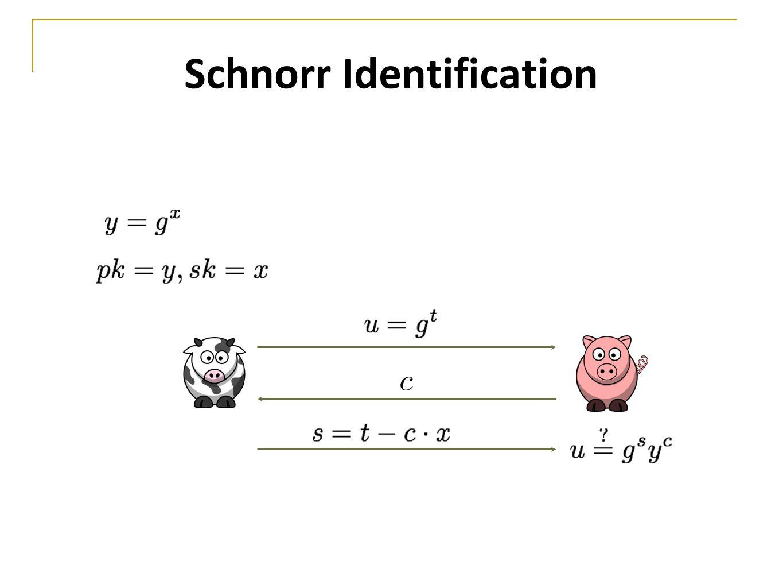 Schnorr Identification