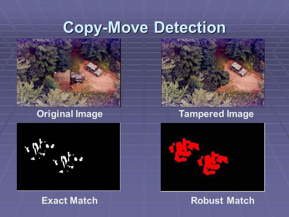 Copy-Move Detection Original ImageTampered Image Exact MatchRobust Match