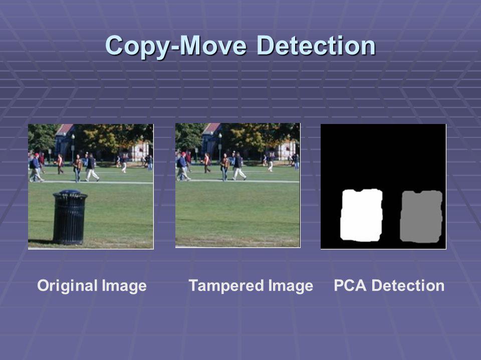 Copy-Move Detection Original Image Tampered Image PCA Detection