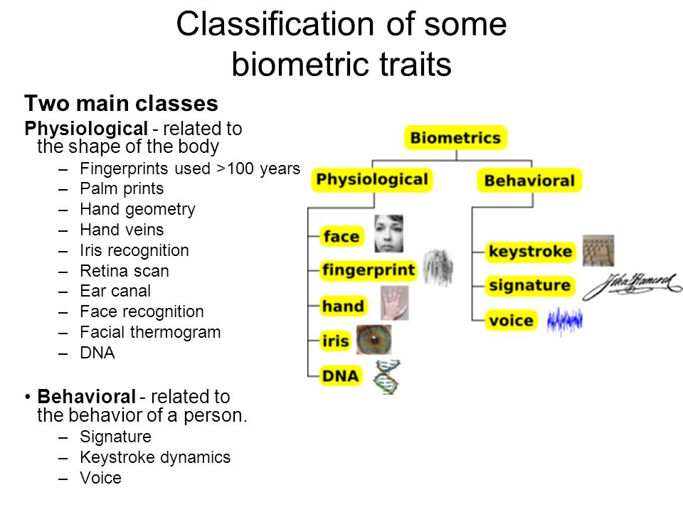 Classification of some biometric traits Two main classes Physiological - related to the shape of the body –Fingerprints used >100 years –Palm prints –Hand geometry –Hand veins –Iris recognition –Retina scan –Ear canal –Face recognition –Facial thermogram –DNA Behavioral - related to the behavior of a person.