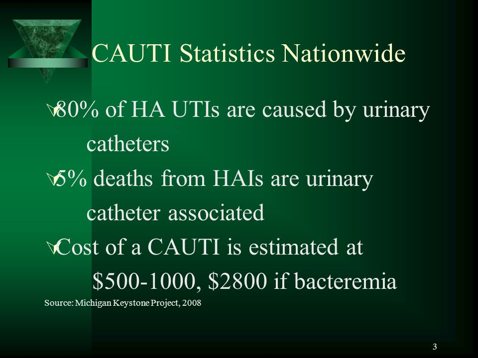 3 CAUTI Statistics Nationwide  80% of HA UTIs are caused by urinary catheters  5% deaths from HAIs are urinary catheter associated  Cost of a CAUTI is estimated at $500-1000, $2800 if bacteremia Source: Michigan Keystone Project, 2008
