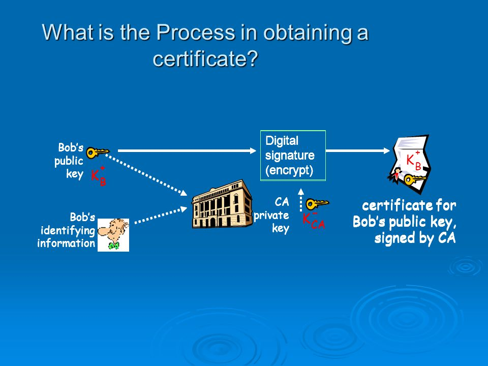 Types of Digital Certificates  There are four main types of digital certificates :- Server Certificates Server Certificates Personal Certificates Personal Certificates Organization Certificates Organization Certificates Developer Certificates Developer Certificates